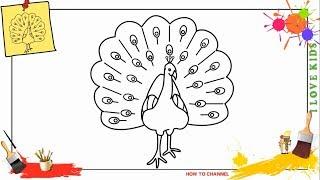 peacock drawing step draw easy drawings beginners children paintingvalley