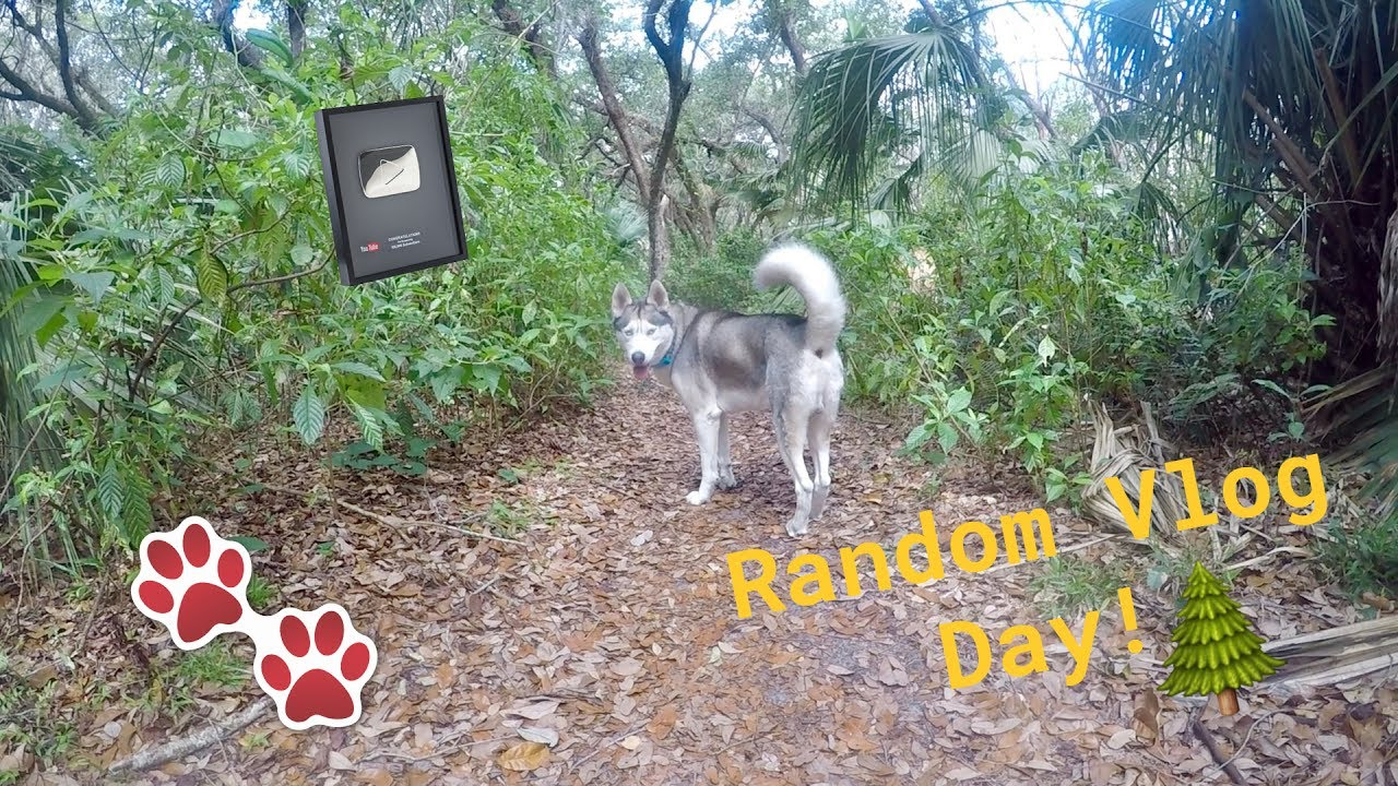 Running Through Forest Trails, 100k Silver Play Button & More! - Random Vlog Day #3