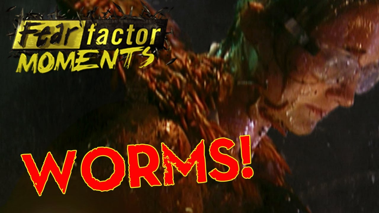 Eating Worms! (Fear Factor Challenge) - YouTube  Fear Factor Worms