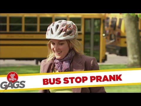 Venus Flytrap Bus Stop