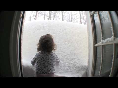 Blizzard 2009, Charlottesville, VA