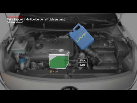 Rio - Faire l'appoint de liquide de refroidissement [Moteur diesel] (For French)
