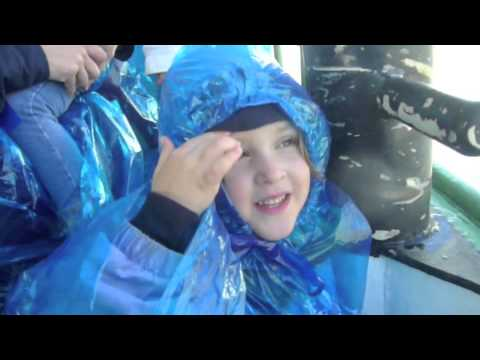 Niagara Falls Weather Report