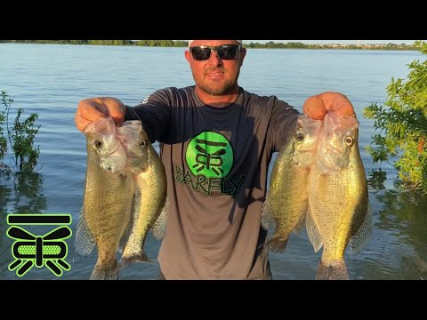 Finding HUGE Crappie, Lake Lewisville