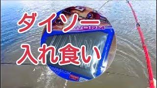 釣り ダイソー100円竿とダイソー100円ワームのコラボレーション! thumbnail