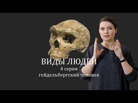 ВИДЫ ЛЮДЕЙ. 4 серия Гейдельбергский человек. Елена Сударикова
