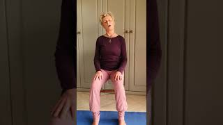 Chair Yoga with Antje in Gozo Surja Namaskar - Sun Salutations