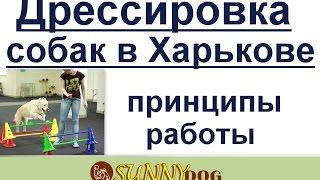 Дрессировка собак в Харькове  принципы нашей работы