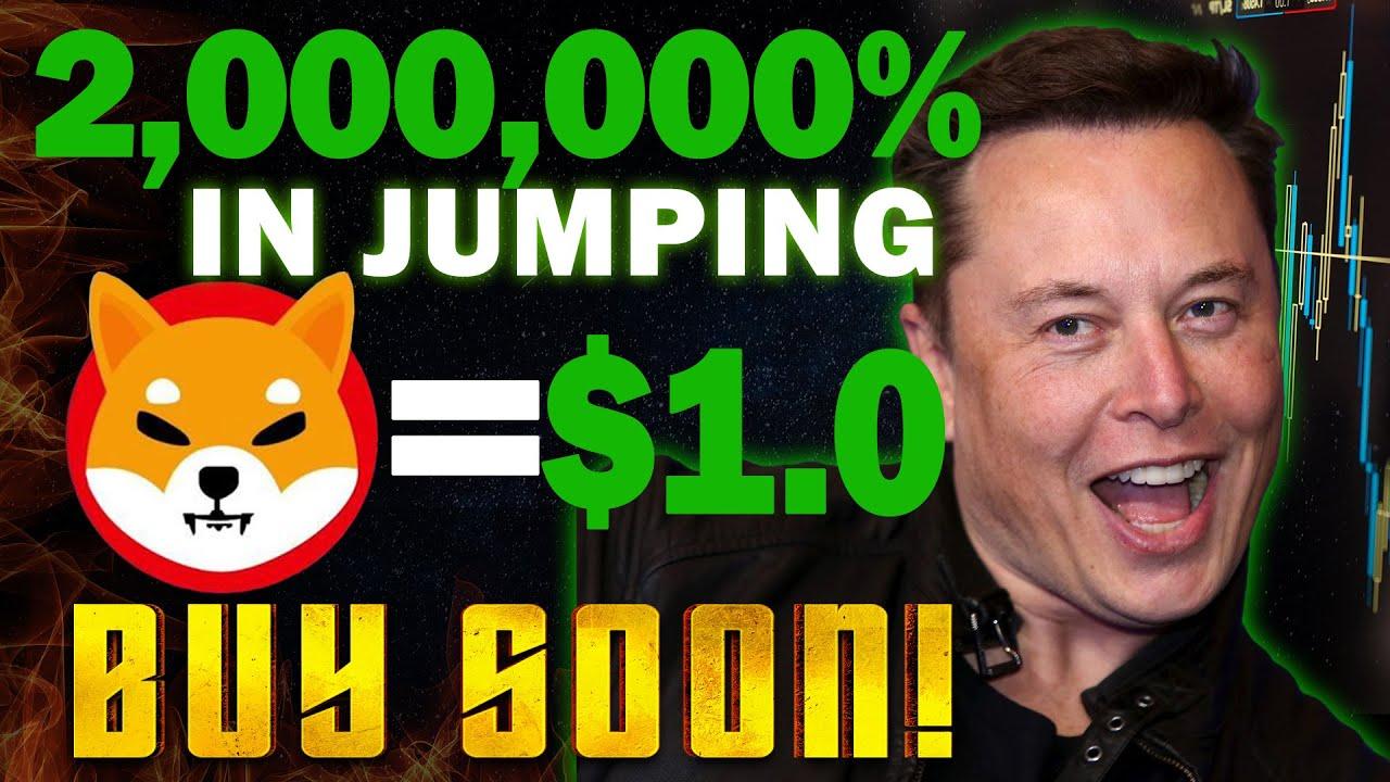 No, Elon Musk's Shiba Inu Tweet Isn't Pumping SHIB's Price