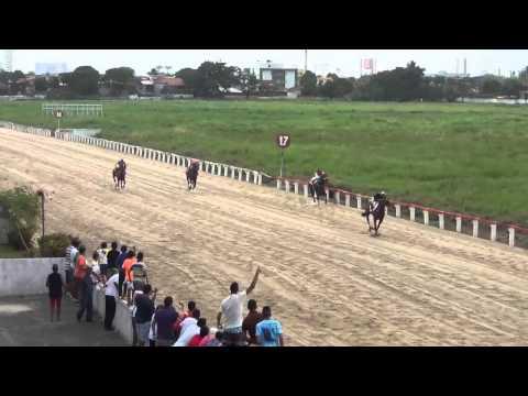 1º Páreo – Prêmio Carol Esporte – 1.100 metros – 68,5s: 1º Aeternus Fulgor – A.Siqueira Ap.4