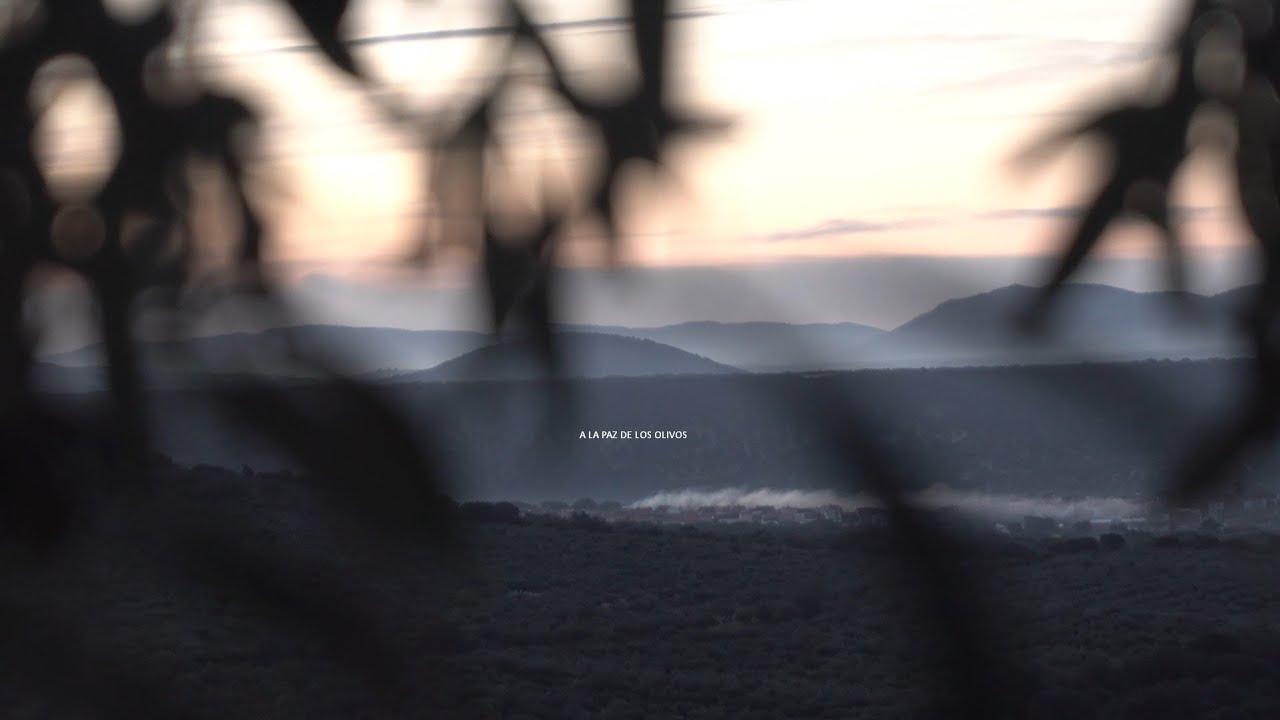 Comienza el rodaje del documental 'A LA PAZ DE LOS OLIVOS'