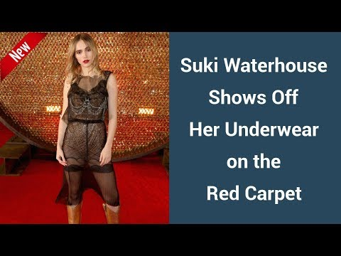 Suki Waterhouse Shows Off Her Underwear on the Red Carpet | Daily Fashion