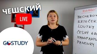 Марафон чешского языка. Живой урок № 6
