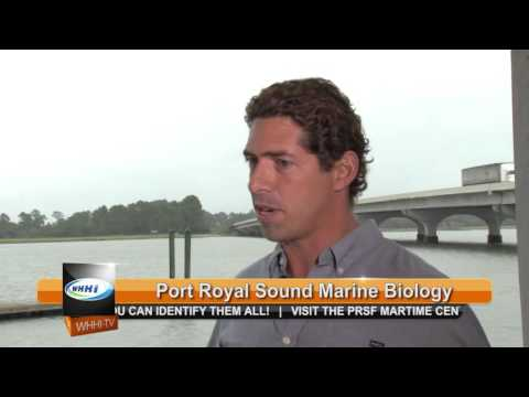 843TV | Port Royal Maritime Center | 9-29-2015 | Only on WHHI-TV