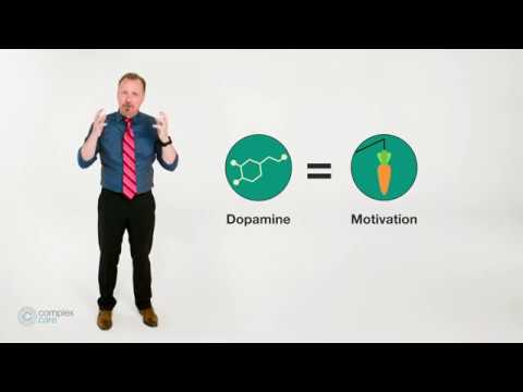 Addiction Neuroscience 101