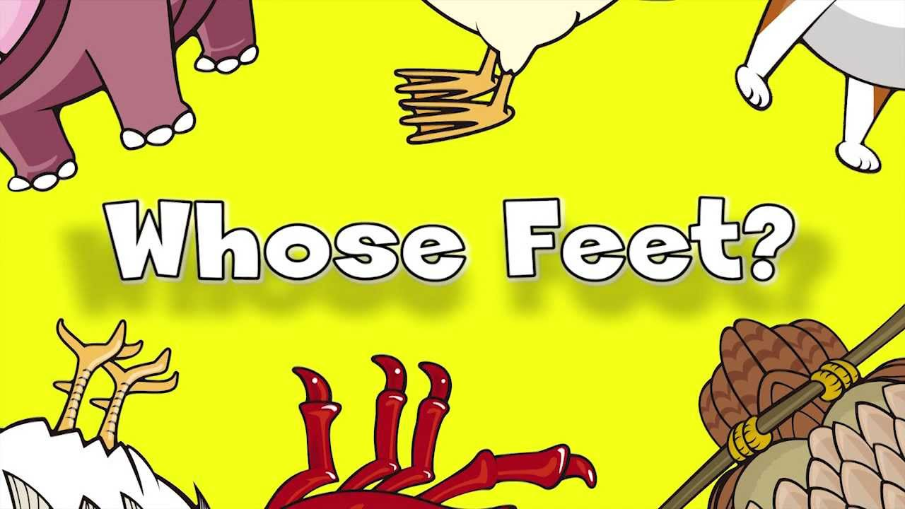 how many feet in one story
