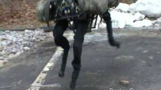 DARPA/Boston Dynamics  Big Dog