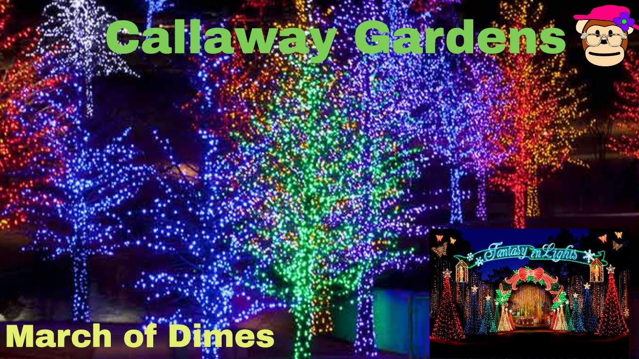 Fantasy In Lights Callaway Gardens Christmas March Of Dimes Proceeds
