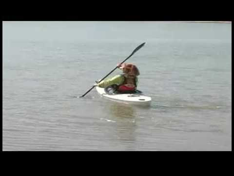 What Kayak To Buy Best Recreational Kayaks Youtube