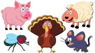 животных Звук песни | образовательных видео | Learn Animal Sound | Nursery Rhyme | Animal Sound Song