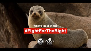 What's next in the #FightfortheBight