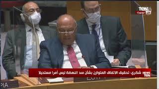 كلمة وزير الخارجية سامح شكري خلال جلسة مجلس الأمن الدولي بشأن أزمة سد النهضة