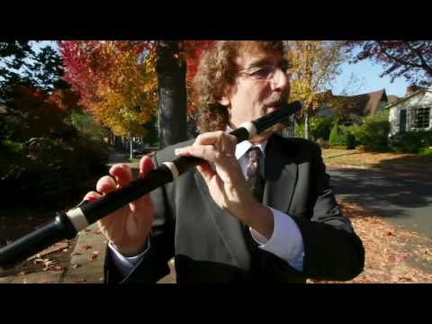 Stephen Schultz: 5 Flutes