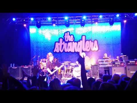 The Stranglers - Golden Brown live @ Birmingham
