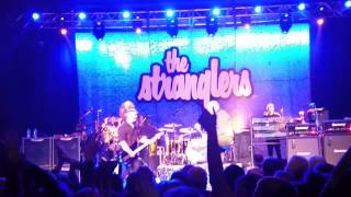 The Stranglers - Golden Brown live @ Birmingham