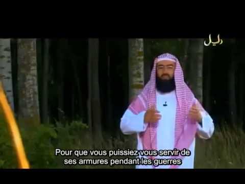 14/19 L'histoire du prophète  Daoud (David) cheikh Nabil Al'Awadi