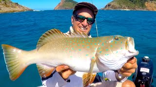 Fishing 120km offshore & Coconut Fish Numus EP.497