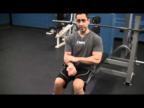 Seated Dumbbell Bicep Curls