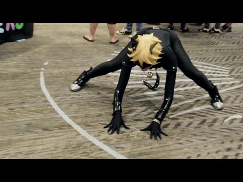 Chat Noir's Weakness | LASER POINTER | Anime PDX 2016