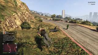 Grand Theft Auto blip