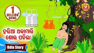 Haria Thakamari Soi Padila ହରିଆ ଥକାମାରି ଶୋଇ ପଡିଲା Odia Moral Story For Kids | Hooke Hoo TV