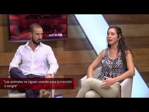 AHORA TV | Entrevista a Jesica Gillij y Lucas Garcilazo