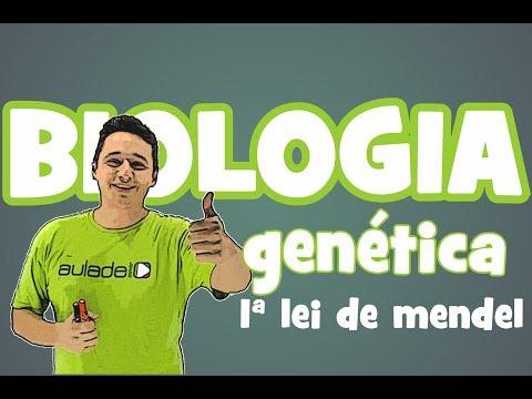 Biologia - Genética: 1ª Lei de Mendel
