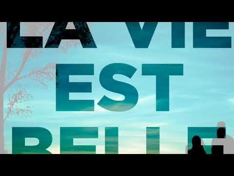 DJ Nest Feat. Feat. Amber - La Vie Est Belle (Official Audio)