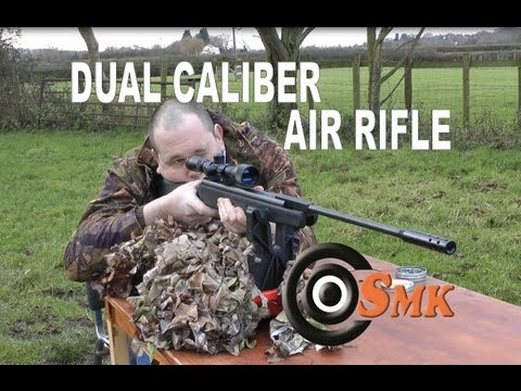REVIEW: Beeman Dual Caliber Air Rifle  177 and  22 - X2 RS2