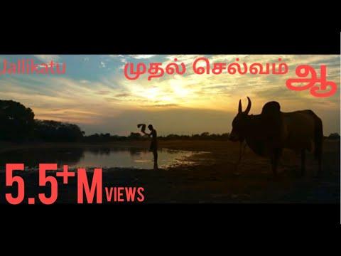 "Jallikattu | முதல் செல்வம் - ""ஆ"" | Muthal Selvam Ah 2016 |  Tamil Short Film about Jallikattu"