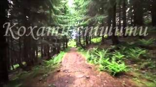 ''Духовні острови Василя Симоненка'' (буктрейлер)