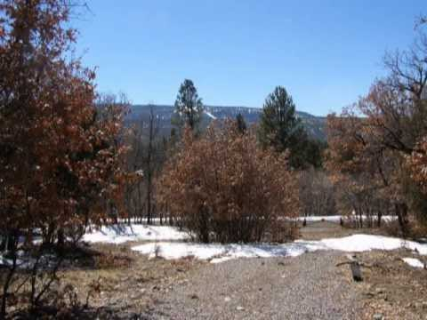 WATER, ELECTRICITY & UNBELIEVABLE VIEWS-Chama New Mexico Real Estate For Sale-Listing #201100991