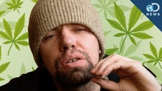 Why Weed Makes You Lazy