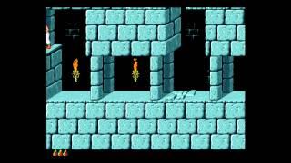 Prince of Persia (1992) - Macintosh version (Wii)