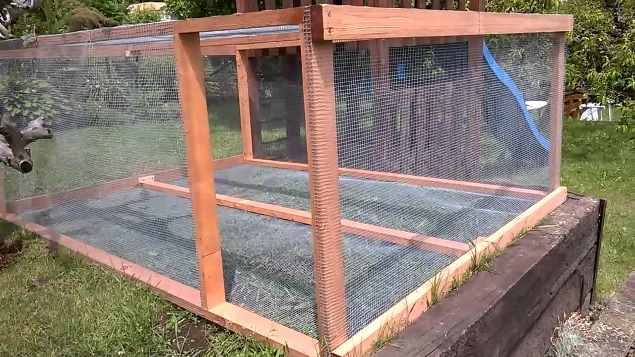outdoor cage for tegu youtube