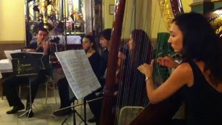 Violin  and Harp  Wedding Ceremony Music- Costa del Sol, Malaga, Sevilla, Murcia, Cartagena, Lorca