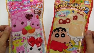 Crayon Shinchan & Hoppe-chan Pudding ~ クレヨンしんちゃん ほっぺちゃん プリン 知育菓子