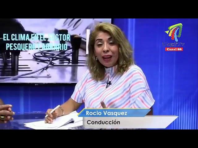 En entrevista con el ex Director de la Producción de Chimbote, Ing. Ezequiel Mayo Lugo