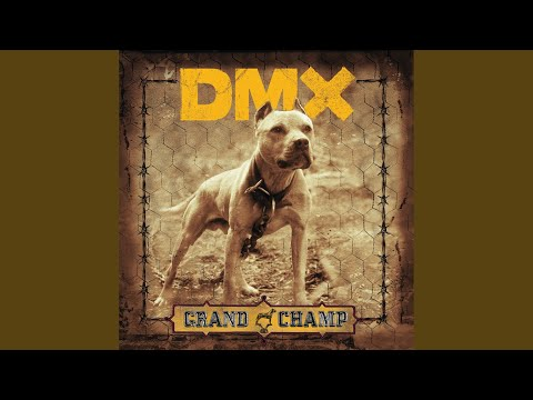 Dmx Get It On The Floor Lyrics