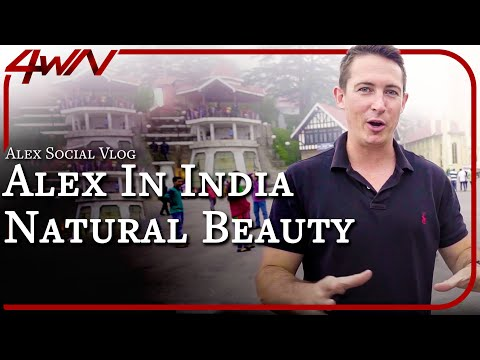 Alex in INDIA! (TEDx Talk Details + Look & Pursue Beauty)
